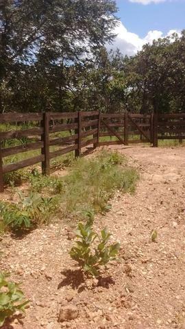 Oportunidades venda de fazenda de 14 alq em Uruaçu GO - Foto 2