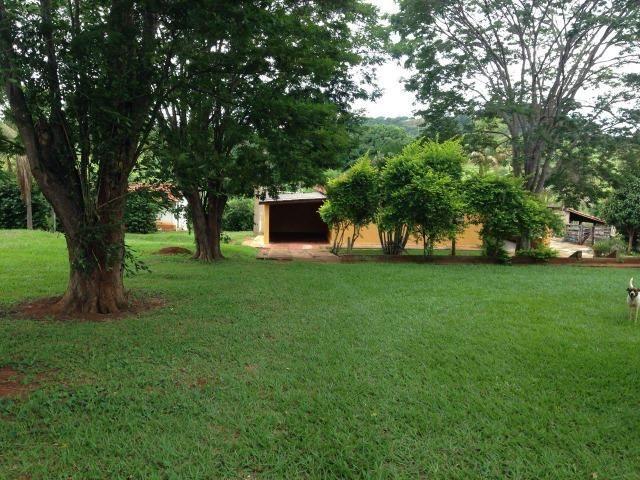 25 Alqueires-Avelinópolis Goiás-Próx. Goiânia-Excelente Preço R$ 150.000,00 o Alqueire - Foto 13