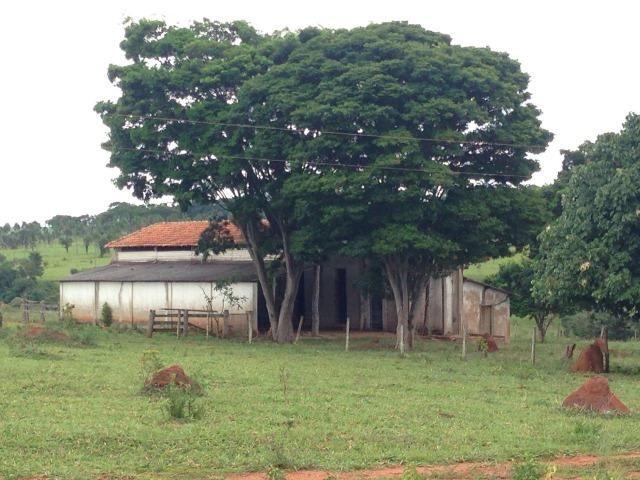25 Alqueires-Avelinópolis Goiás-Próx. Goiânia-Excelente Preço R$ 150.000,00 o Alqueire - Foto 17