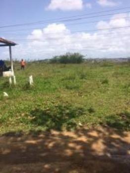 Granja-Chácara-Sítio 1,6 Hectares em Olinda, Aceito Automóvel ou imóvel - Foto 9