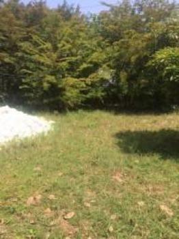 Granja-Chácara-Sítio 1,6 Hectares em Olinda, Aceito Automóvel ou imóvel - Foto 19