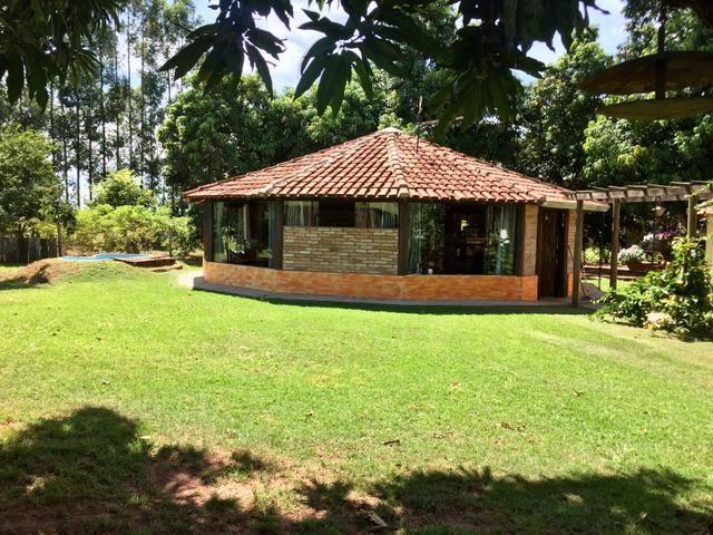 Fazenda em Frutal Minas Gerais Triângulo Mineiro - Foto 4