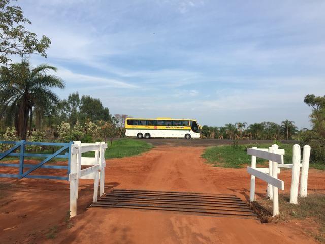 Fazenda em Frutal Minas Gerais Triângulo Mineiro - Foto 17