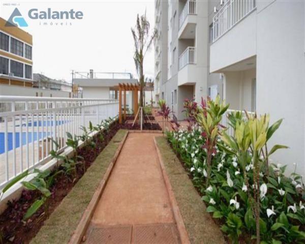 Apartamento à venda com 2 dormitórios em Vila industrial, Campinas cod:AP051571 - Foto 2