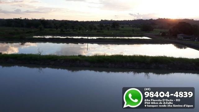 Chácara com 9 Represas no Asfalto em Alta Floresta - Foto 5