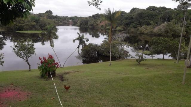 Ilha no Ramal Novo Tempo em iranduba - AM - Foto 10