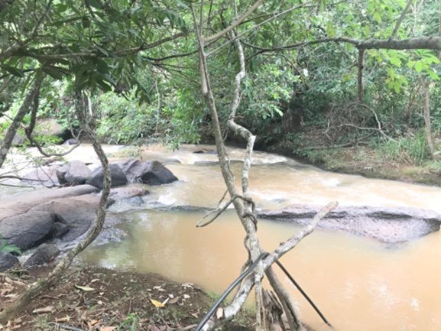 Alugo Chácara em Taquaruçu, Palmas - Tocantins - Foto 14