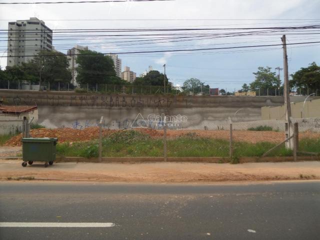 Terreno para alugar com 0 dormitórios em Cambuí, Campinas cod:AR003053