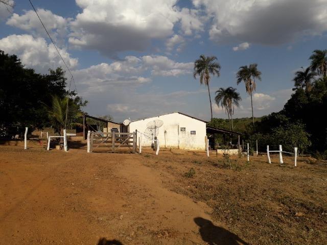 Fazenda à venda ou troca R$ 12 mil o Hectare- Zona Rural - Luziânia/GO - Foto 3