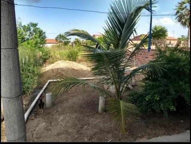 Casa em São Gonçalo do Amarante, bairro: Omega - Foto 5