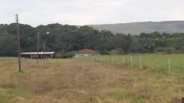 (Fazenda com 297ha em Mato Grosso) no município de Alto Paraguai(MT-409 KM35) - Foto 8