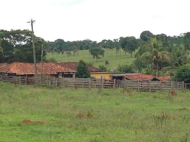 25 Alqueires-Avelinópolis Goiás-Próx. Goiânia-Excelente Preço R$ 150.000,00 o Alqueire - Foto 16