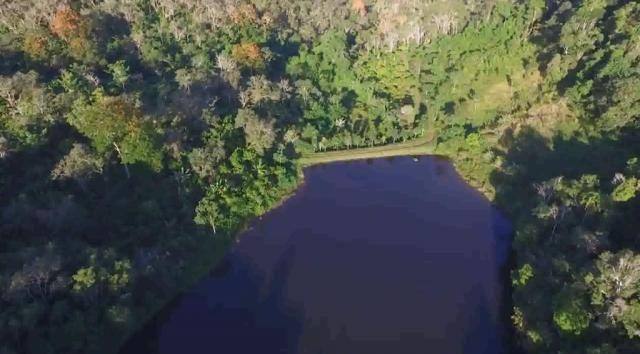 Fazenda de Cacau, Látex e Mogno no Brasil - Cidade Ituberá-BA - Foto 20