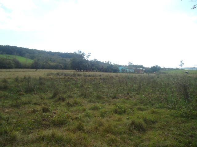 (AR1032) Chácara em Vitória das Missões, Rs - Foto 4