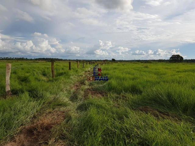 Fazenda à venda por R$ 2.000.000 - Centro - Seringueiras/RO - Foto 2