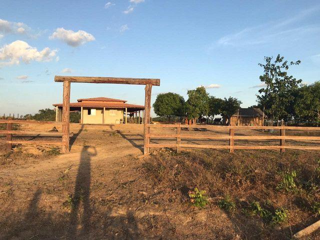 Fazenda 300 hec no Maranhão - Foto 7