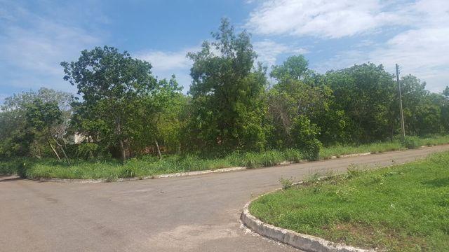Lote de 542 m² na 509 Sul - Bem Localizado - Foto 4