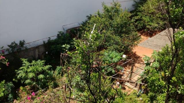 Casa em lote amplo, 3 quartos, quintal, 3 vagas - Foto 13
