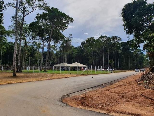 Chácaras Rio Negro, Lotes 1.000 m², a 15 minutos de Manaus/¬; - Foto 12
