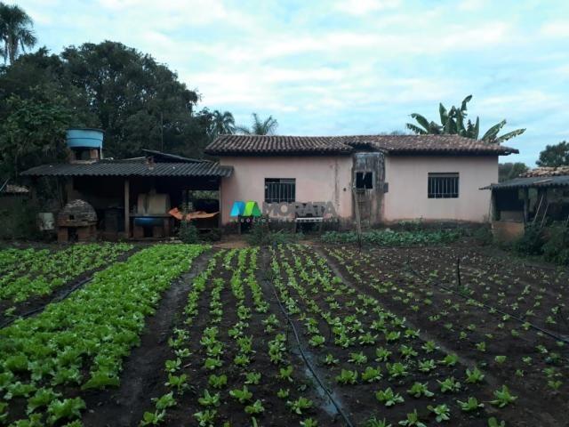 Fazendinha - 08 hectares - paraopeba (mg)