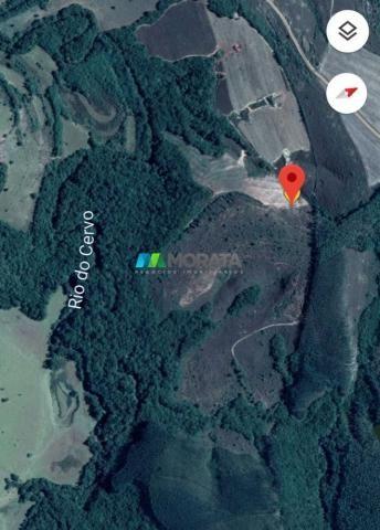 Fazenda à venda - 33 hectares - região de lavras (mg) - Foto 2