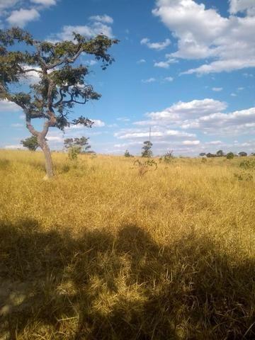 Fazenda em Silvânia - Foto 6