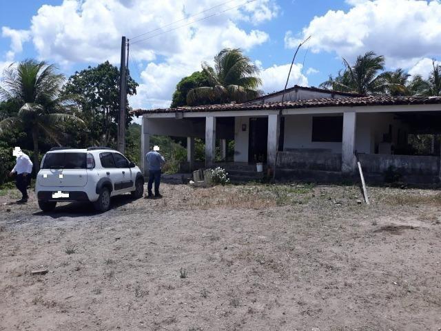 Chã de Alegria= Vend. 125 mil reais=10 Hect.=Casa,Pastos,Energia,Água e mais - Foto 20