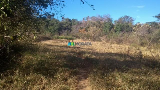 Fazenda à venda - 40 hectares - lavras (mg) - Foto 6