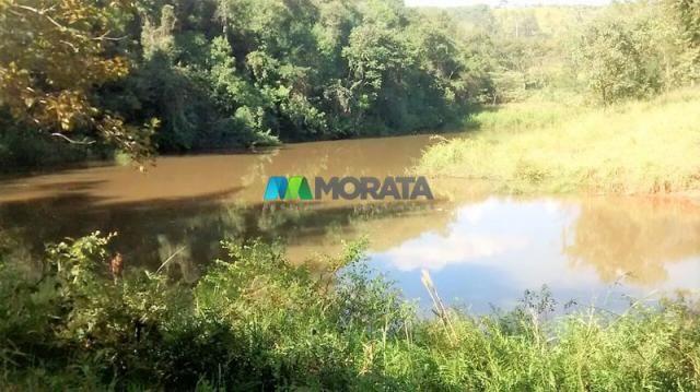 FAZENDA À VENDA - 187 HECTARES - ONÇA DO PITANGUI (MG) - Foto 9