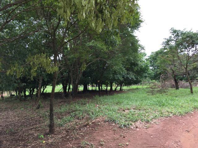 Chácara em Bela Vista de Goiás com casa - Foto 17