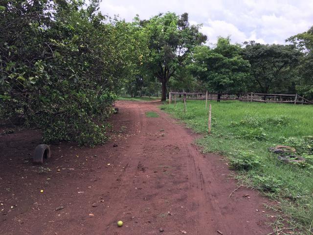 Chácara em Bela Vista de Goiás com casa - Foto 8