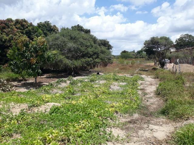 Terreno na Serra de Itabaiana - Foto 6