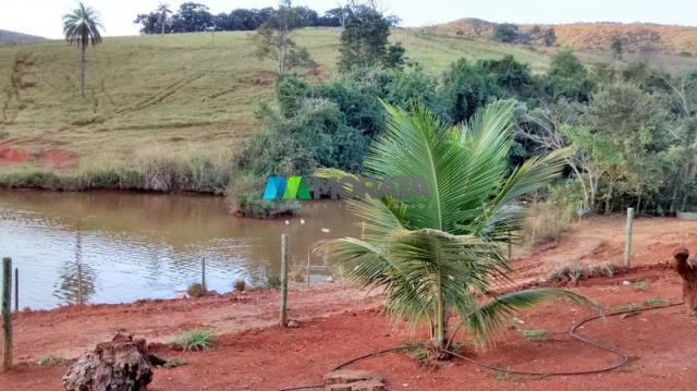 Fazenda à venda - 75 hectares - onça do pitangui (mg) - Foto 9