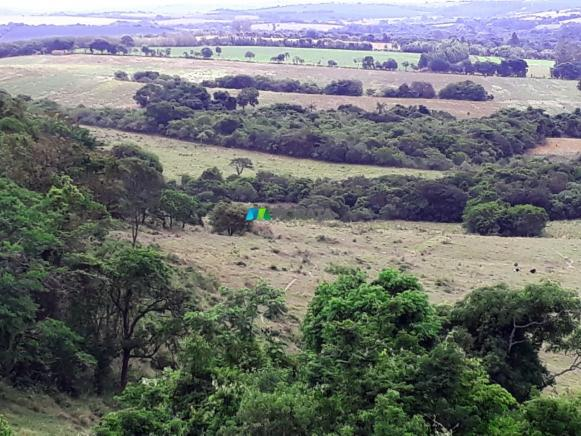 Fazenda à venda - 90 hectares - lavras (mg) - Foto 7