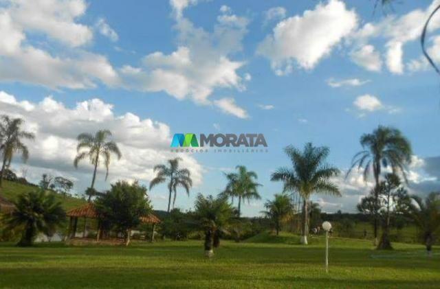 Fazenda / haras à venda - 16 hectares - brumadinho (mg) - Foto 7