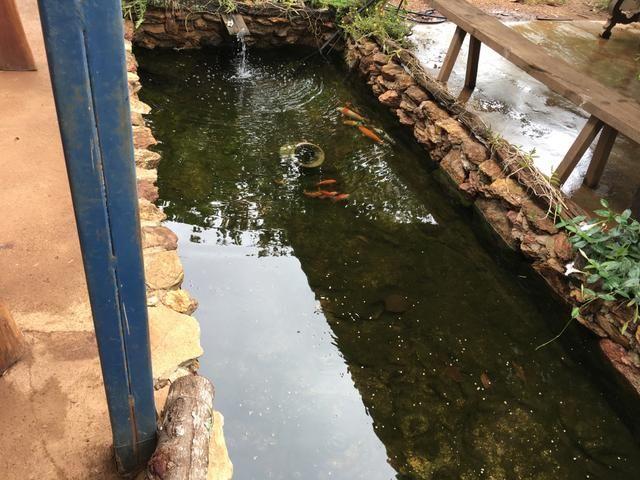 Chácara em Bela Vista de Goiás com casa - Foto 4