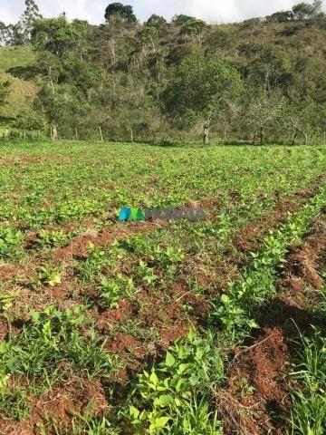 Fazenda à venda - 40 hectares - região santana dos montes (mg) - Foto 15