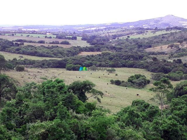 Fazenda à venda - 90 hectares - lavras (mg) - Foto 13