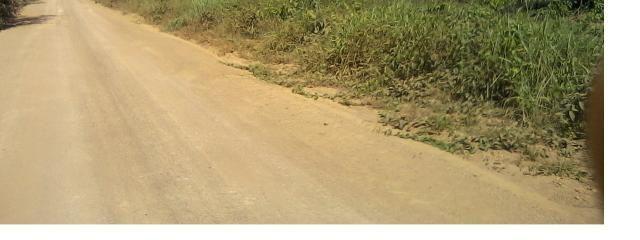 10000 hectares, Boa para Lavoura de Soja, Região Vale Guaporé- MT