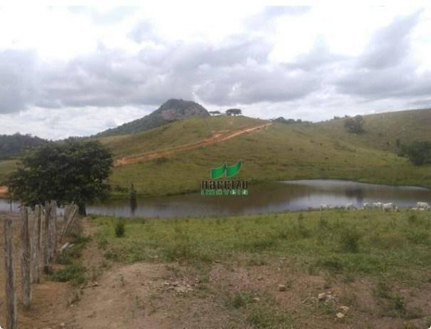 Linda fazenda à venda, 8000000 m² por r$ 6.300.000 - inocoop - itamaraju/ba - Foto 2