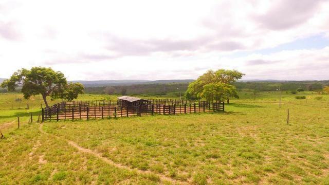 Fazenda Jaguaquara - Foto 20