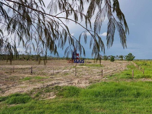 Fazenda à venda por R$ 2.000.000 - Centro - Seringueiras/RO - Foto 7
