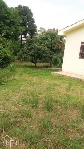 Casa à venda com 3 dormitórios em Pinheiro machado, Santa maria cod:10055 - Foto 6