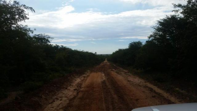 Fazenda à venda, 150000000 m² por R$ 55.809.000,00 - Zona Rural - Pilão Arcado/BA - Foto 5