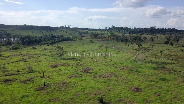 Fazenda com Curral e Pasto - Prox. Rio Preto - Foto 6