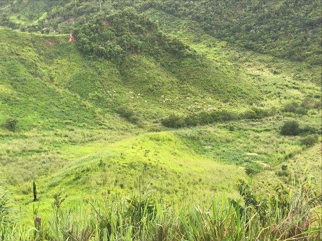 Fazenda 300 hec no Maranhão