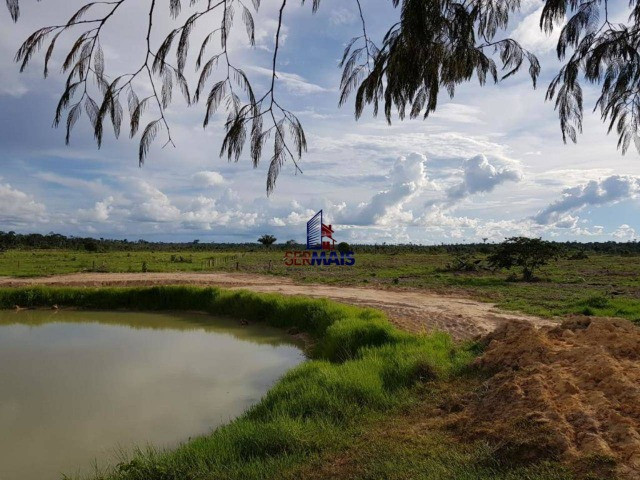 Fazenda à venda por R$ 2.000.000 - Centro - Seringueiras/RO - Foto 4