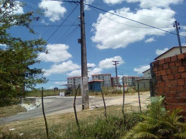 Vendo ou troco terreno / sítio em Alagoinhas Bahia - Foto 4