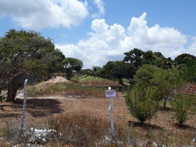 Terreno na Serra de Itabaiana - Foto 2