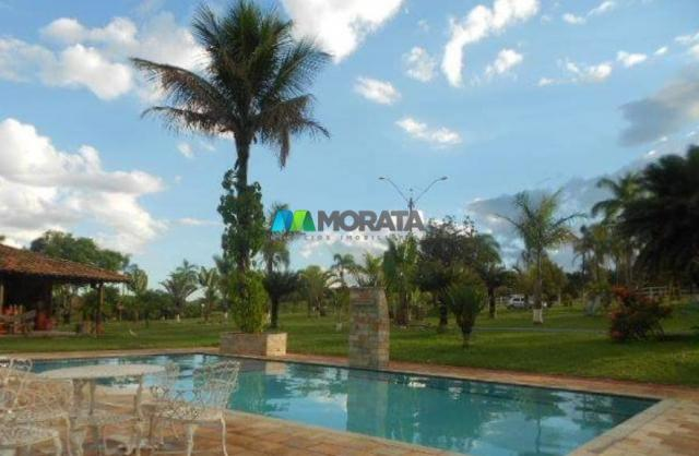 Fazenda / haras à venda - 16 hectares - brumadinho (mg) - Foto 5